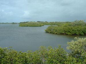 Orchid Island httpsuploadwikimediaorgwikipediacommonsthu