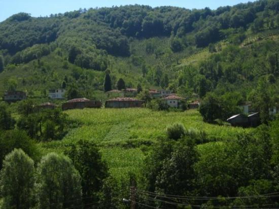 Ordu Province Beautiful Landscapes of Ordu Province