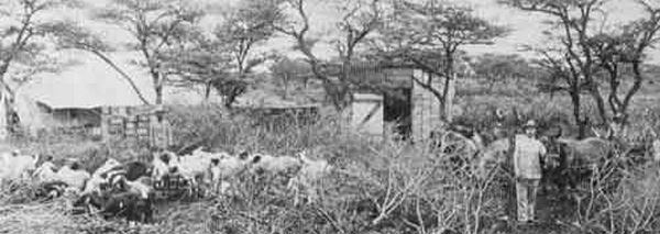 Otjiwarongo in the past, History of Otjiwarongo