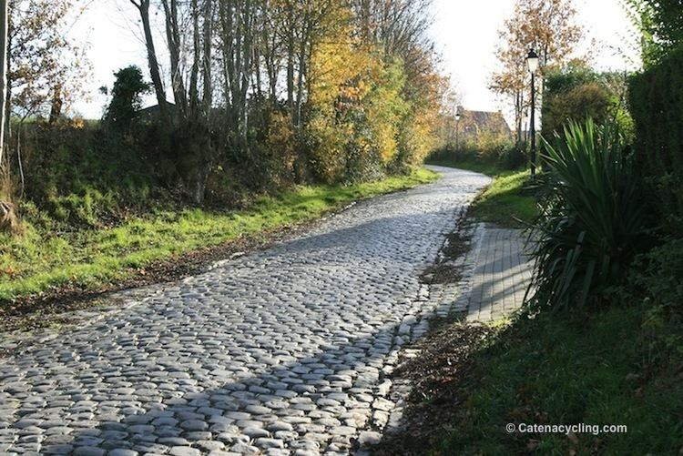 Oude Kwaremont Oude Kwaremont Catena Cycling
