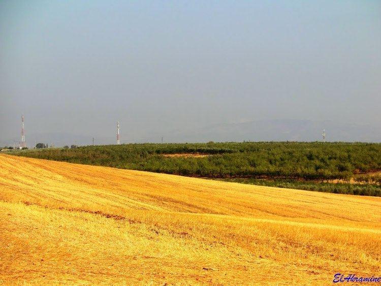 Oujda Beautiful Landscapes of Oujda