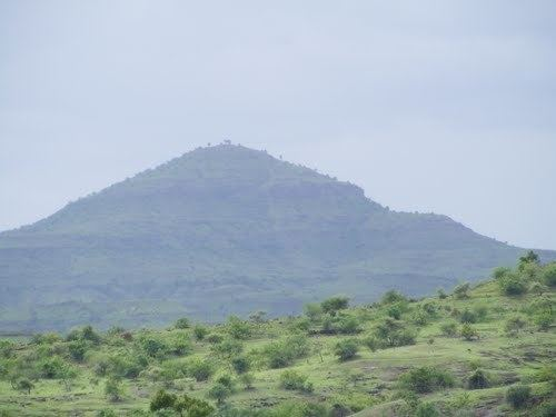 Image result for wani maharashtra