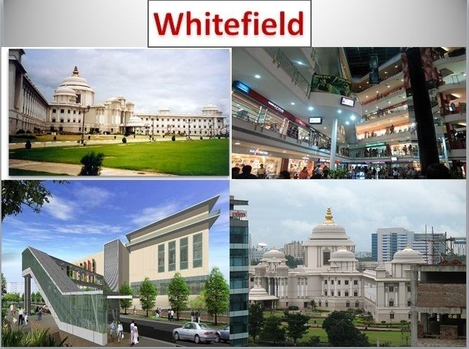 whitefield-1