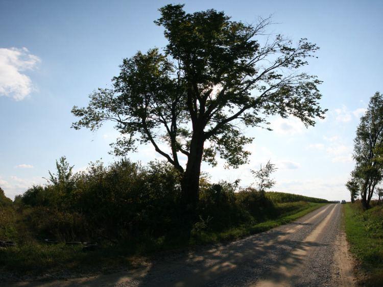 Owen Township, Clinton County, Indiana