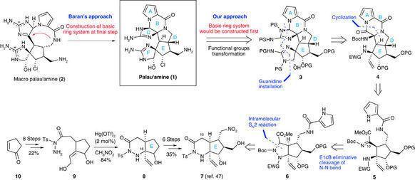 Palau'amine Total synthesis of palau39amine Nature Communications