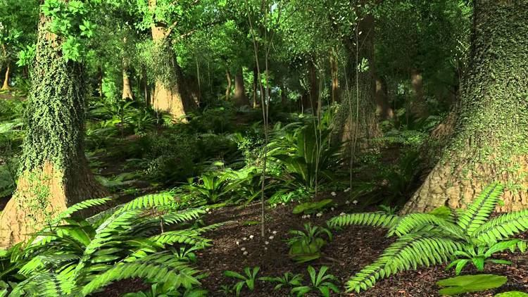 Paleocene Paleocene Rain Forest Golden Colorado 64 Million Years Ago YouTube