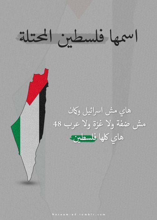 Palestine (region) httpssmediacacheak0pinimgcom736xdf19a4