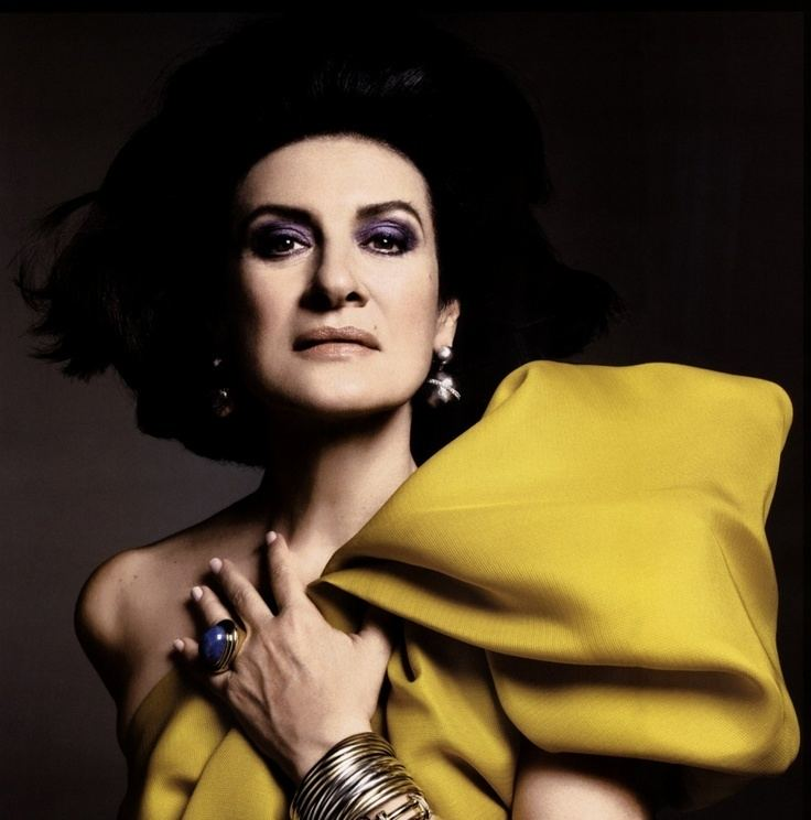 Paloma Picasso Paloma Picasso the seventies IT girl inspired YSL