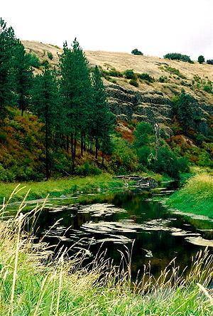 Palouse River httpsuploadwikimediaorgwikipediacommonsthu