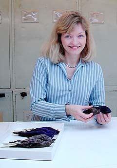 Pamela C. Rasmussen httpsuploadwikimediaorgwikipediacommonscc