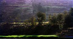 Panchkula Beautiful Landscapes of Panchkula