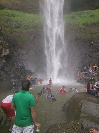 Pandavkada Falls Pandavkada Falls Navi Mumbai Top Tips Before You Go TripAdvisor