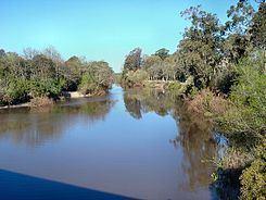 Pando Creek httpsuploadwikimediaorgwikipediacommonsthu