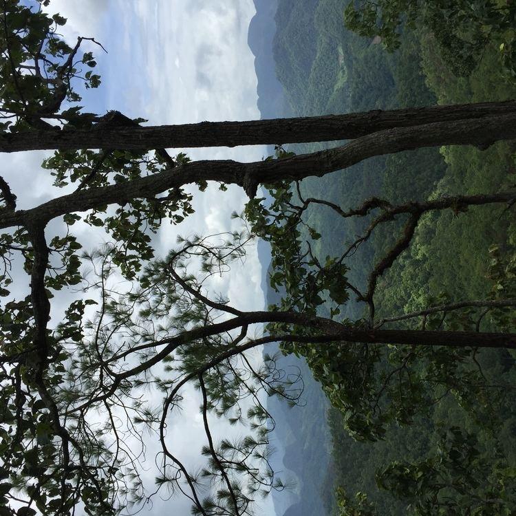 FilePang Mapha Pang Mapha District Mae Hong Son Thailand