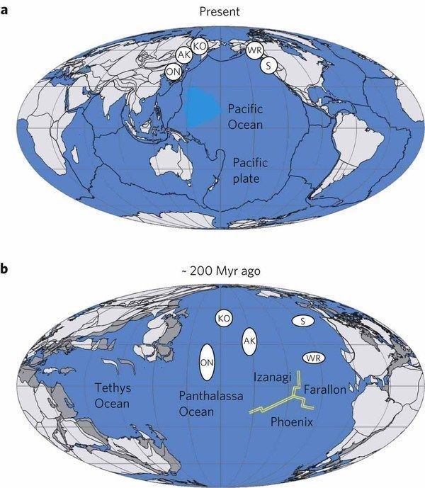 Panthalassa IntraPanthalassa Ocean subduction zones revealed by fossil arcs and