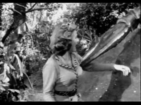 Panther Girl of the Kongo 1955 Panther Girl of the Kongo Chap 02 YouTube