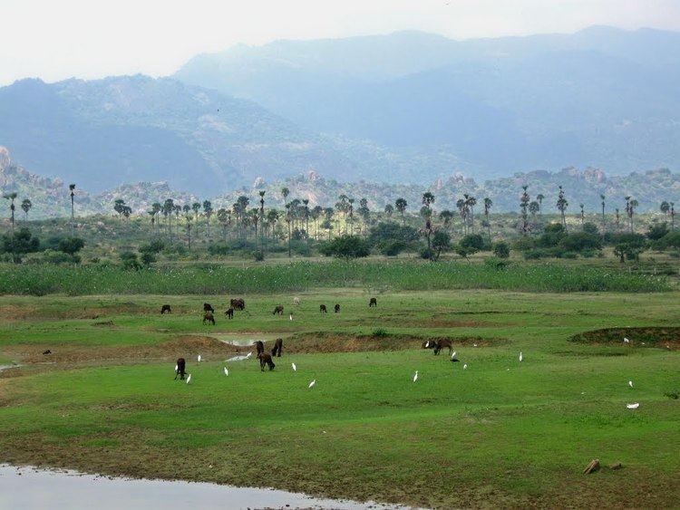 Papanasam Beautiful Landscapes of Papanasam