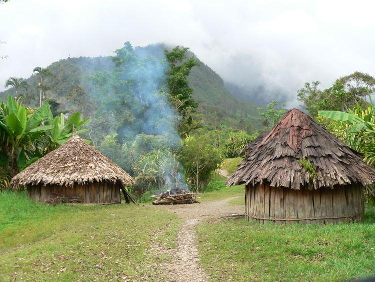 Papua httpstrekpapuafileswordpresscom201101trek