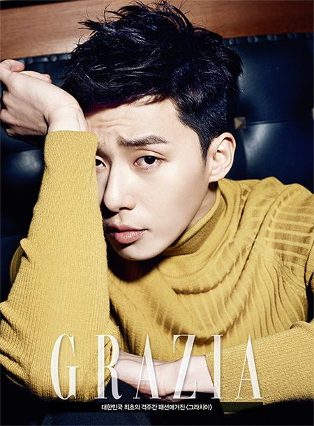 Park Seo-joon dinoseoul Kentertainment editorial and musings