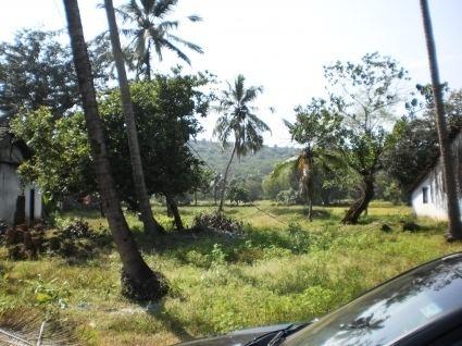 Parra, Goa plot Sale Parra 056 Easylivin Goa