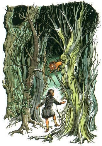 Pauline Baynes pauline baynes illustrations Google Search Narnia Pinterest