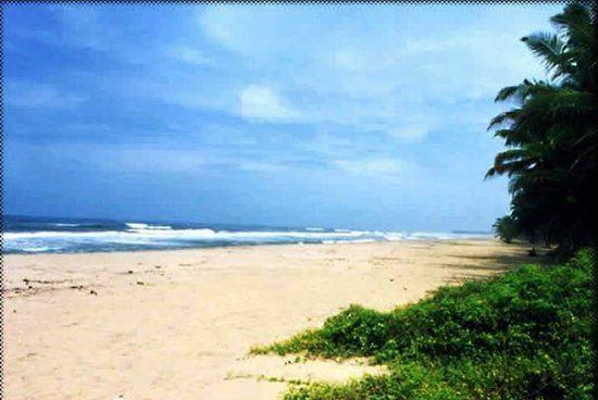 Payyoli Payyoli Beach Kozhikode Top Tips Before You Go TripAdvisor