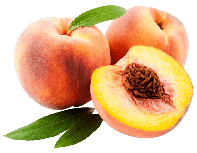 Peach Peach PNG Transparent Images PNG All