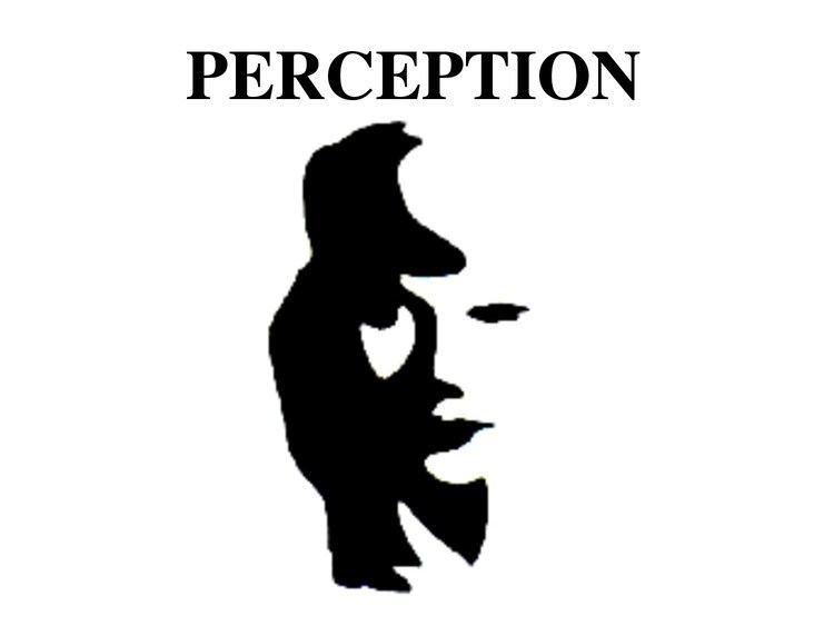 Perception How to define perception YouTube