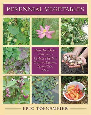 Perennial vegetable wwwperennialsolutionsorgwpcontentuploads2011