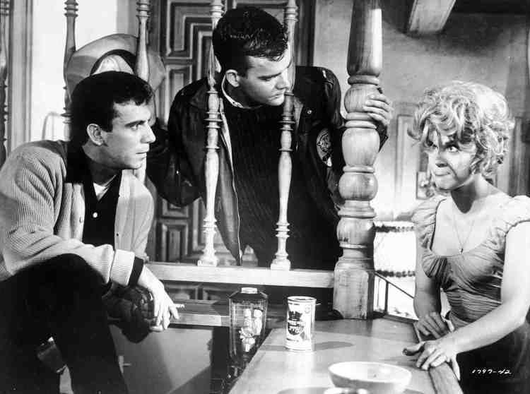 Period of Adjustment (film) Period of Adjustment 1962 Toronto Film Society Toronto Film