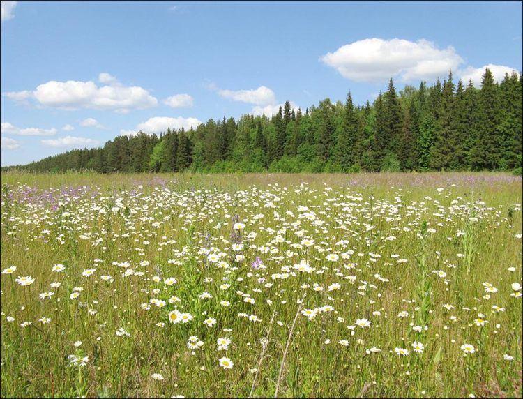 Perm Krai Beautiful Landscapes of Perm Krai