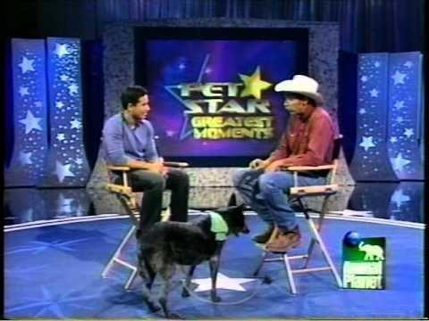 Pet Star Skidboot on Pet Star YouTube