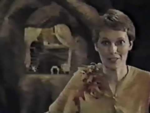 Peter Pan (1976 musical) Peter Pan Mia Farrow Danny Kaye 1976 YouTube
