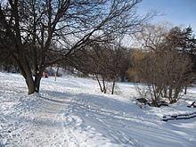 Peterborough, Ontario httpsuploadwikimediaorgwikipediacommonsthu