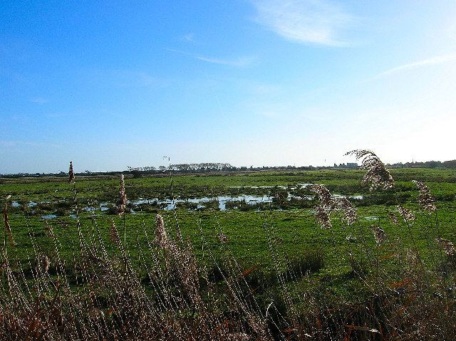 Pevensey Levels Pevensey Levels Simon Carey Geograph Britain and Ireland