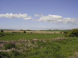 Pevensey Levels httpsuploadwikimediaorgwikipediacommonsthu