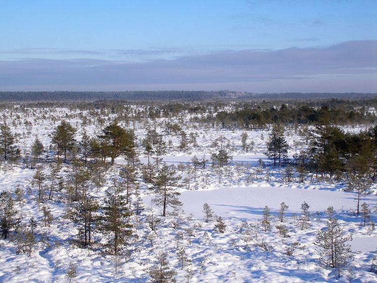 Põhja-Kõrvemaa Nature Reserve