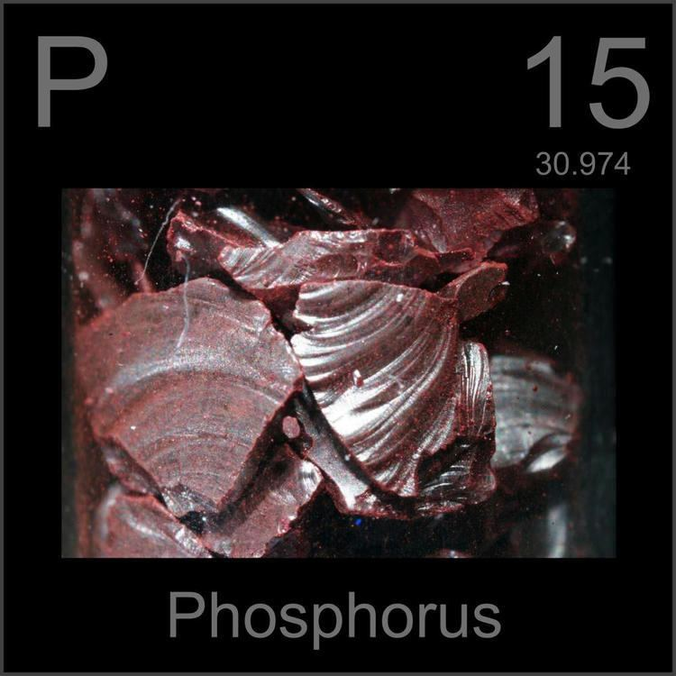 Phosphorus Pictures stories and facts about the element Phosphorus in the
