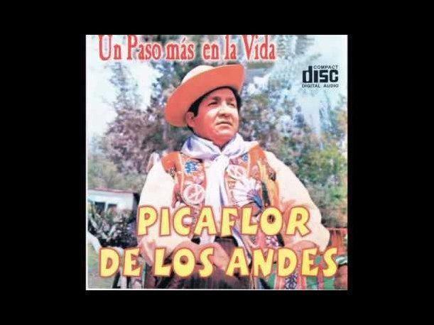 Picaflor de los Andes picaflorandesjpg