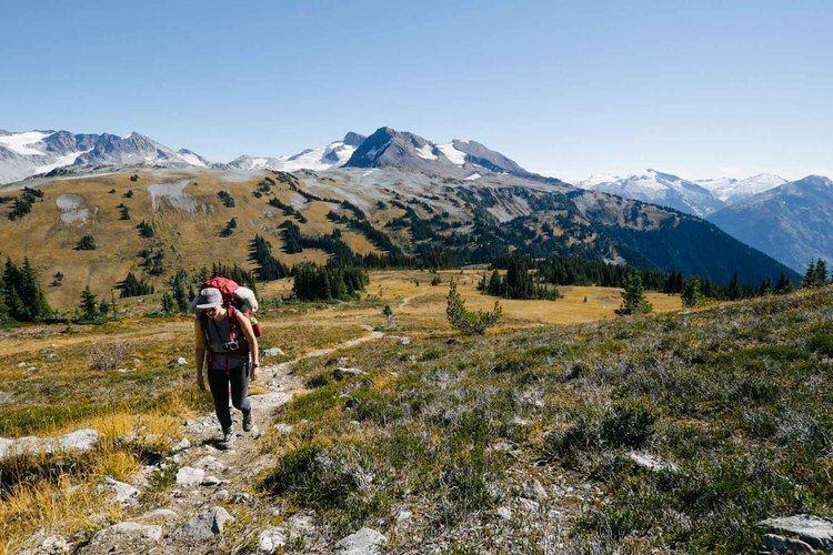 Piccolo Summit fieldandforestcoimagesadventuresmusicalbumps