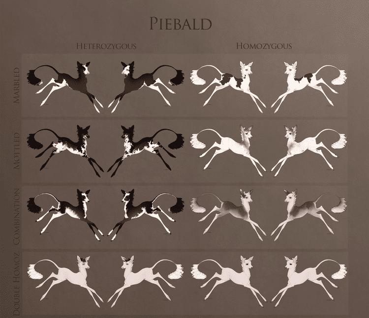 Piebald Fawnlings The Piebald Mutation by Ehetere on DeviantArt