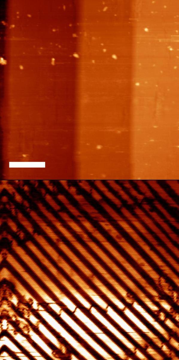 Piezoresponse force microscopy