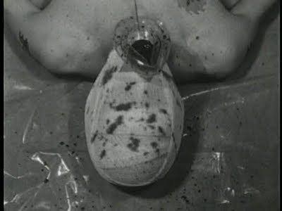 Pig (1998 film) Pig 1998 HORRORPEDIA