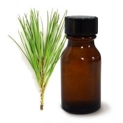 Pine oil Shop Pure amp Natural Pine Oil Online At Our Credible Store