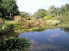 Pines Garden httpsuploadwikimediaorgwikipediacommonsthu