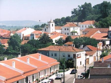 Pinheiro Grande wwwalmondanetmicrositesimagesgaleryff64f36jpg