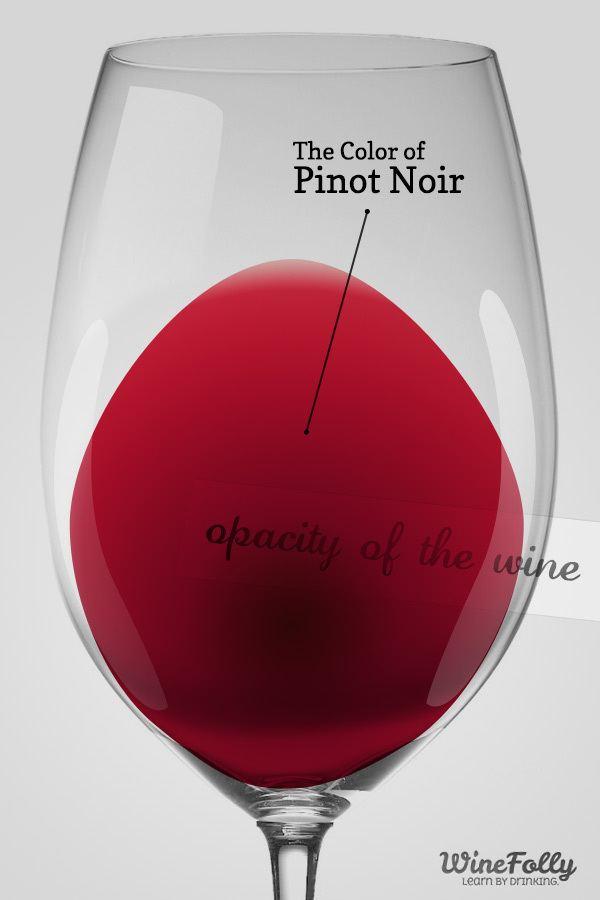 Pinot noir Amazing Pinot Noir Wine Facts Wine Folly