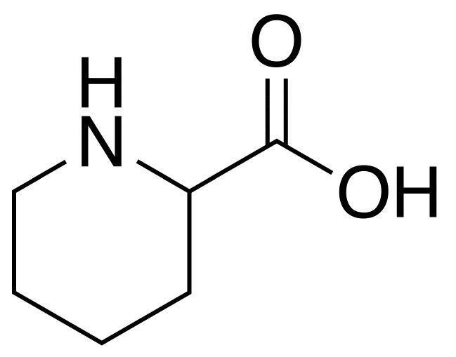 Pipecolic acidemia