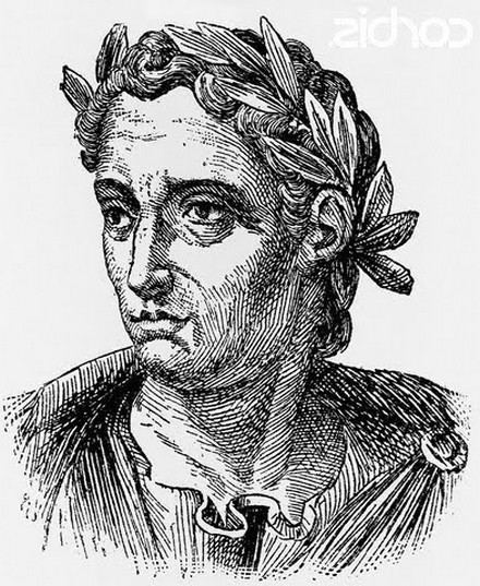 Pliny the Elder Gaius Plinius Secundus The Younger Short Biography