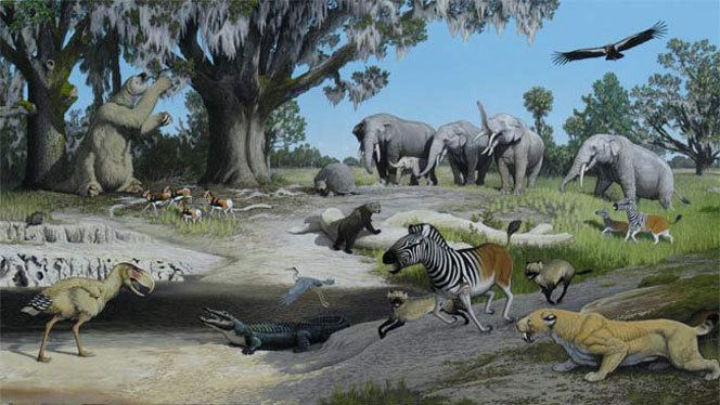 Pliocene New study shows aerosol compounds impact global warming not just CO2